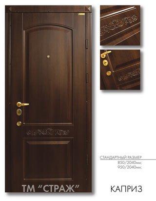 металлическая дверь страж